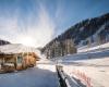 Alpenrose Aussen Laerchenalm für Feratel